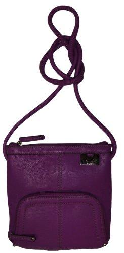 Tignanello Women's/Girl's Genuine Leather N/S Top-Zip Xbody Handbag, Plum