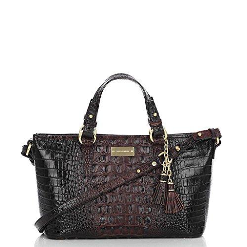 Brahmin Mini Asher Tote in Cocoa Melbourne Leather Handbag J55151CO