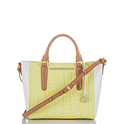 Brahmin Mini Arno Tote Limelight La Scala Color Block