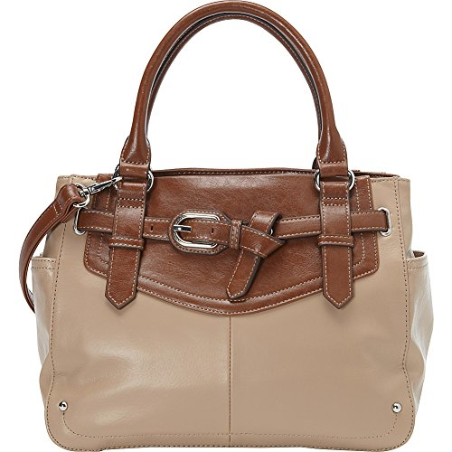 Tignanello The Statement Satchel (Frappe)