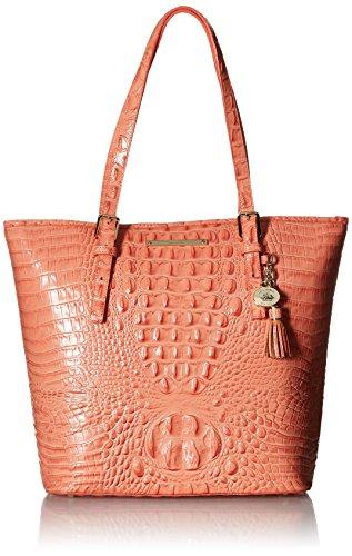 Brahmin Asher Tote Bag