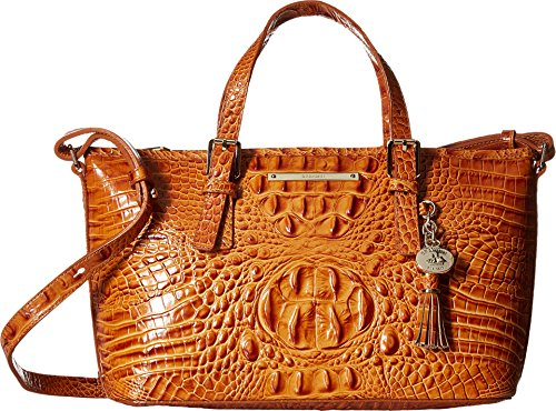 Brahmin Women's Mini Asher Dark Rum Satchel