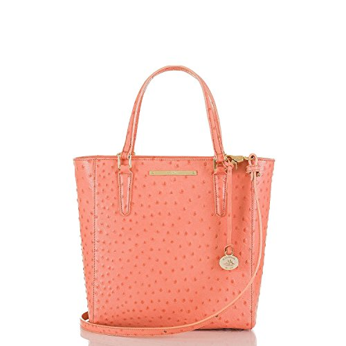 NEW AUTHENTIC BRAHMIN HARRISON CONVERTIBLE SMALL HANDBAG TOTE (Peach Normandy)